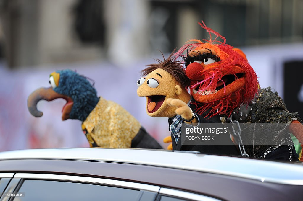 The Muppets arrive for the world premiere of Disney's 'Muppets Most Wanted,' March 11, 2014 at El Capitan Theatre in Hollywood, California.