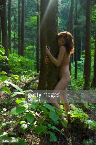 The Naked Tree 23