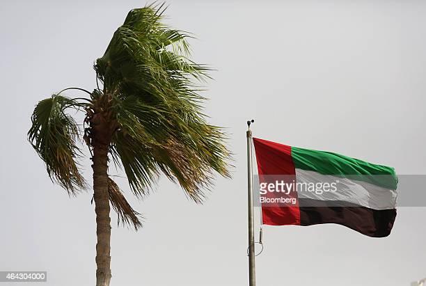 The national flag of the UAE flies in high wind near a palm tree in Dubai United Arab Emirates on Saturday Nov 8 2014 A year ago Dubai regulators...