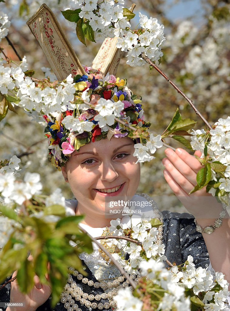 The new 'blossom queen' Carolina Sofia Wolf poses for photographers on a 'blossom event' on May 5, 2013 in Jork, northern Germany. Since 30 years the blossom queen is elected for representative duties of the so called 'Altes Land' (Lit. Old Land) region that is the biggest contiguous fruit-producing region in Central Europe.