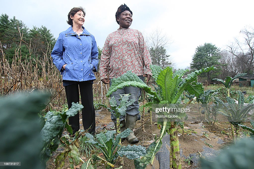 The New Entry Sustainable Farming Project uses GIS mapping technology to match growers in need of land with landowners willing to have their land farmed. Susan Shay, left, leases a portion of her land to Seona Ban Ngufor, a Cameroon native living in Lawrence, who runs a small farm on the land.