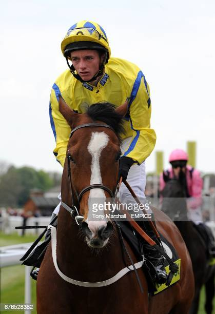 The Nifty Fox ridden by David Allan going to post prior to the totepool Flexi Betting Handicap during Day Two of the Dante Festival 2010 at York...