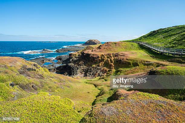 The Nobbies landscape of Phillip Island, Australia.