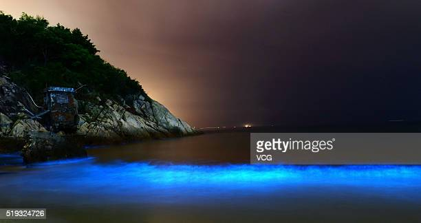 The noctiluca scintillans glows at Dapeng bay on April 5 2016 in Shenzhen Guangdong Province of China The noctiluca scintillans could glow blue light...