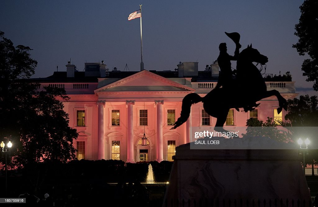 The north side of the White House is lit by pink lights in honor of Breast Cancer Awareness Month in Washington, DC, October 24, 2013. AFP PHOTO / Saul LOEB