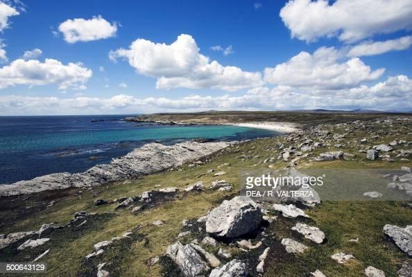 The northeast coast of Pebble Island Falkland Islands British Overseas Territory United Kingdom