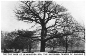 The oak at Leamington Spa the supposed centre of England 1936 Sights of Britain second series of 48 cigarette cards issued with Senior Service Junior...