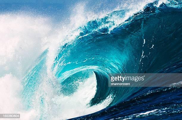 O oceano Awakes