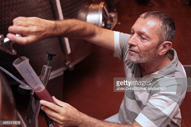 The oenologist monk 'Frère Marie' of 'Abbaye de Lerins' takes some vine juice in the cellar on Agust 26 at the Saint Honorat island in the bay of...