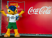 The official mascot of the FIFA World Cup Brazil 2014 poses for pictures during its official presentation at the Olympic Village Arthur da Tavola at...