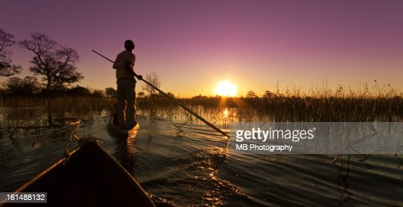 The Okavango Delta : Stock Photo