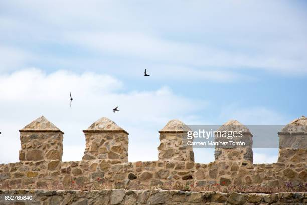 The Old city wall in Avila, Castilla. Spain