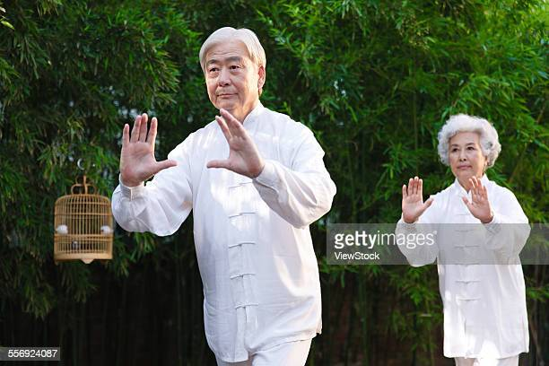 The old couple are doing morning exercises
