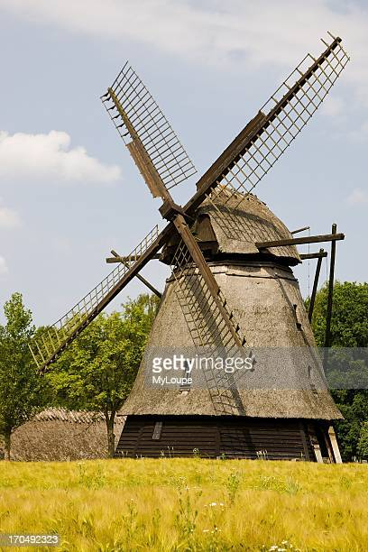 The old thatched windmill at Funen village Odense Denmark
