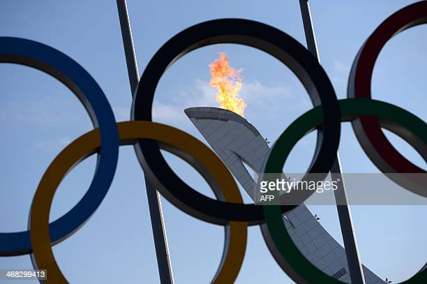 The Olympic flame is seen through the Olympic rings at the Sochi Olympic park on February 8 2014 on the first day of the Sochi Winter Olympics AFP...