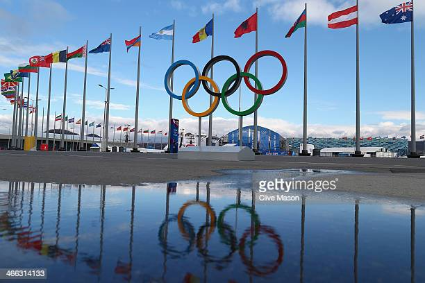 The Olympic Rings are pictured next flags of the competing nations inside the Olympic Park prior to the Sochi 2014 Winter Olympics on February 1 2014...