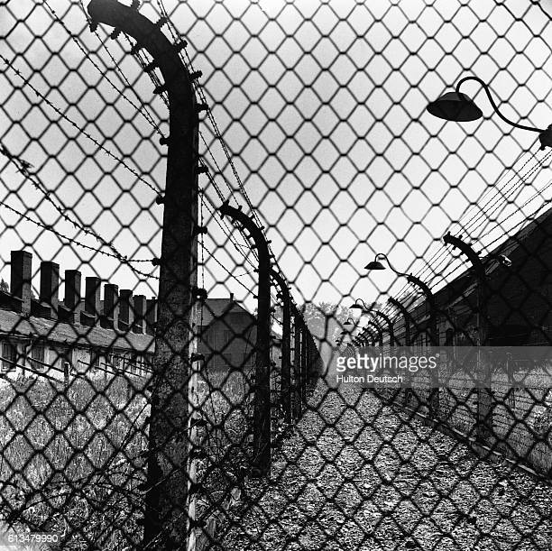 The Ominous Barbed Wire Fences Of Auschwitz Between the ominous barbed wire the path was constantly illuminated