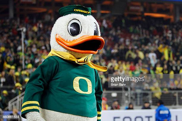The Oregon Ducks mascot encourages fans against the Arizona Wildcats on December 5 2014 during the Pac12 Championship at Levi's Stadium in Santa...