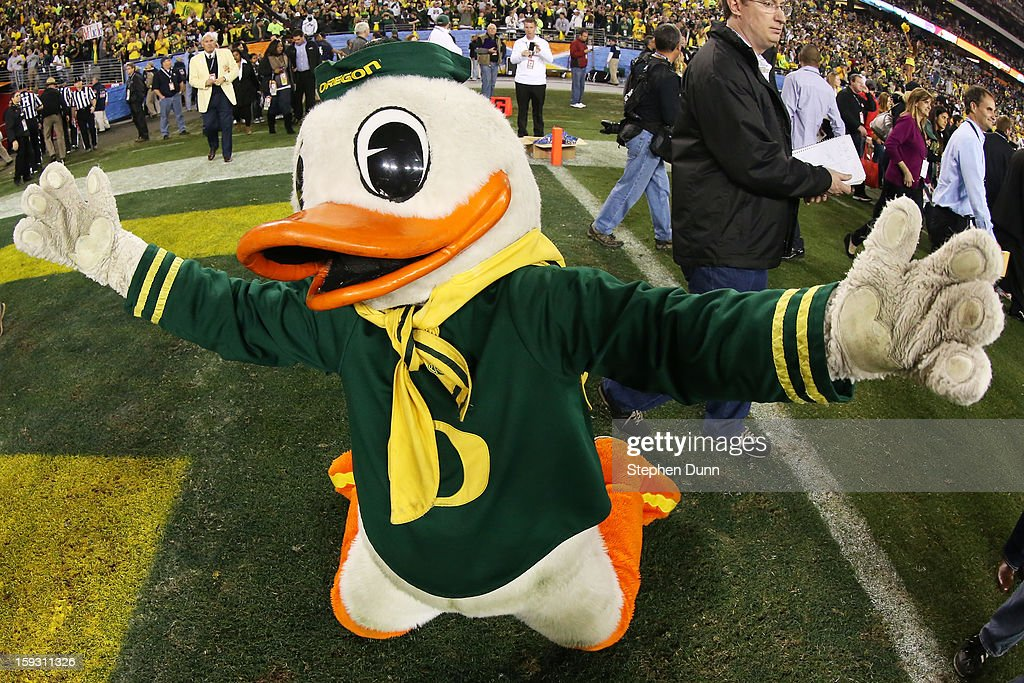 The Oregon Ducks mascot Puddles celebrates their 35 to 17 win over the Kansas State Wildcats at the Tostitos Fiesta Bowl at University of Phoenix Stadium on January 3, 2013 in Glendale, Arizona.