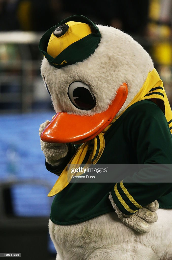 The Oregon Ducks mascot Puddles reacts during their 35 to 17 win over the Kansas State Wildcats at the Tostitos Fiesta Bowl at University of Phoenix Stadium on January 3, 2013 in Glendale, Arizona.