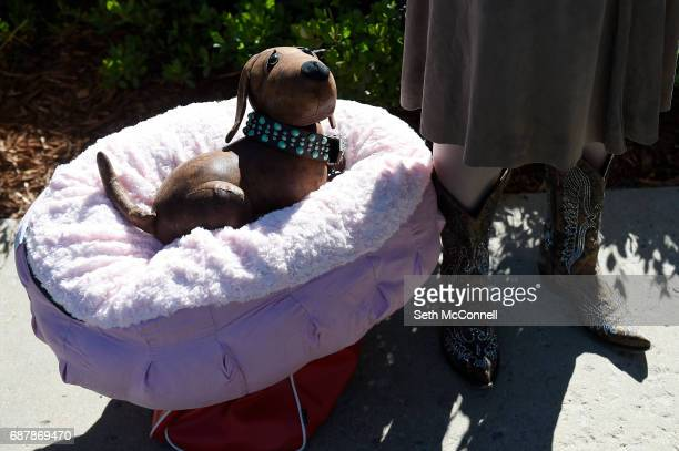 The Original Pet Pal a pet bed that mimics the beat of a human heart sits at its inventors feet during open auditions for the television show Shark...
