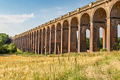Looking across fields at the Ouse Valley Viaduct, in Sussex