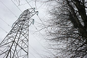 The outline of electricity cables stretch across a gloomy winter sky in woodland near Wrington North Somerset England Diagonally the cables travel...