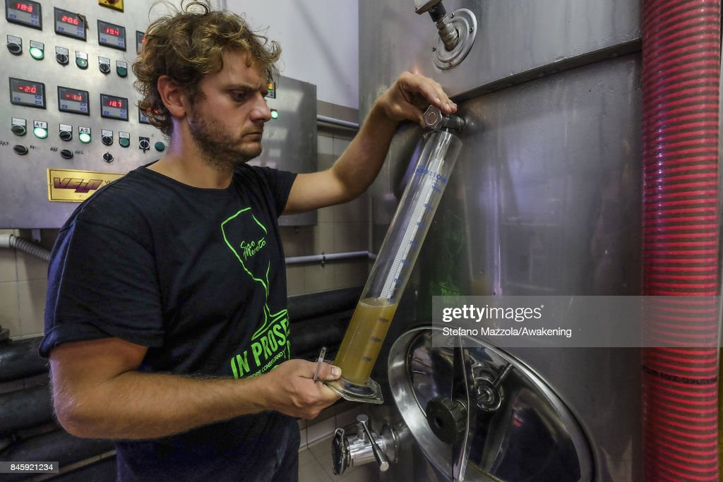 The owner of the winery Siro Merotto checks the state of the wine on September 11, 2017 in Treviso, Italy. According to Coldiretti, the Italian agricultural lobby, British buyers drank 40 million liters of Prosecco in 2016 and spent more than 350 million euros on it, representing approximately 30% market growth for the year.