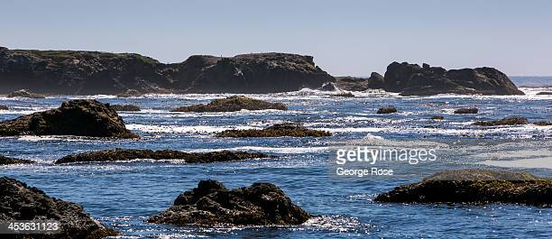 The Pacific Ocean near Glass Beach is viewed on September 6 in Fort Bragg California Located three hours north of San Francisco Mendocino County has...