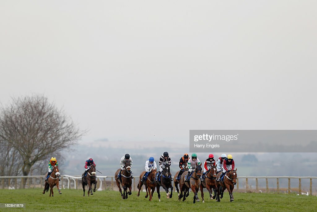 The pack race along the back straight during 'The Rural Living Show 23rd March Selling Hurdle Race' at Taunton Racecourse on February 28, 2013 in Taunton, England.