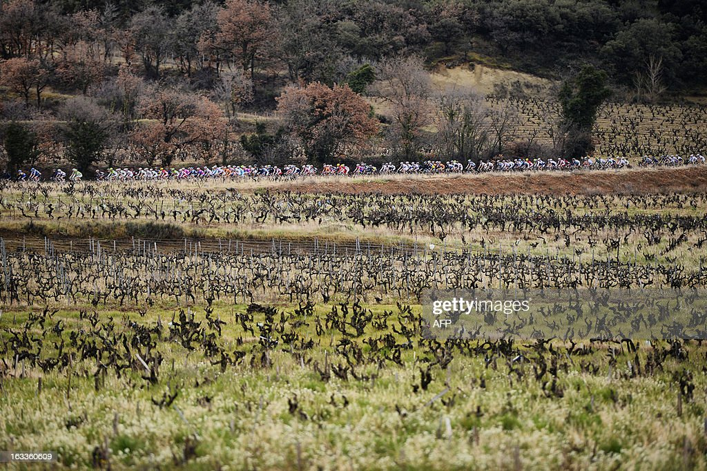 The pack rides during the fifth stage of the 71st Paris-Nice cycling race between Chateauneuf du Pape and La Montagne de Lure, near Saint-Étienne-les-Orgues, on March 8, 2013. Porte won the stage and became the new wearer of the yellow jersey. AFP PHOTO / JEFF PACHOUD