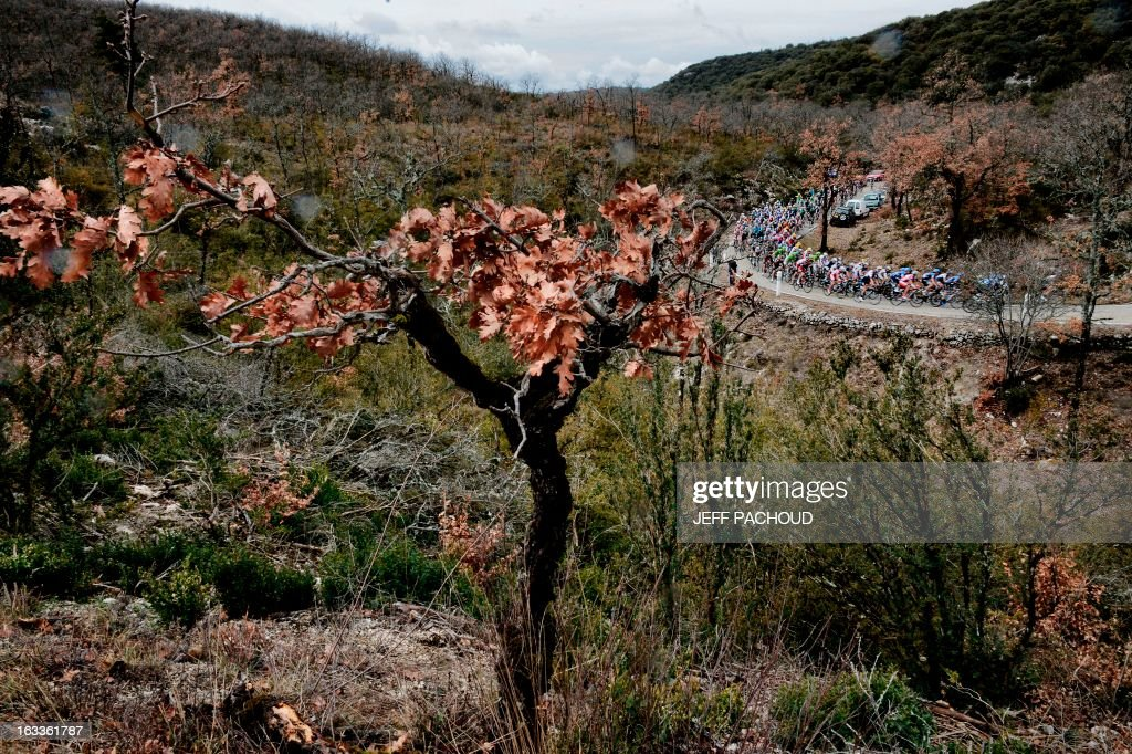 The pack rides during the fifth stage of the 71st Paris-Nice cycling race between Chateauneuf du Pape and La Montagne de Lure, near Saint-Étienne-les-Orgues, on March 8, 2013. Porte won the stage and becomes the new wearer of the yellow jersey. AFP PHOTO / JEFF PACHOUD