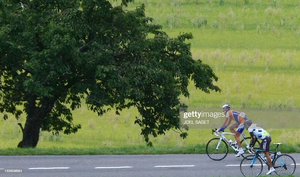 The pack rides past a tree on July 19, 2009 in the 207,5 km and fifteenth stage of the 2009 Tour de France cycling race run between Pontarlier and Verbier (Switzerland).