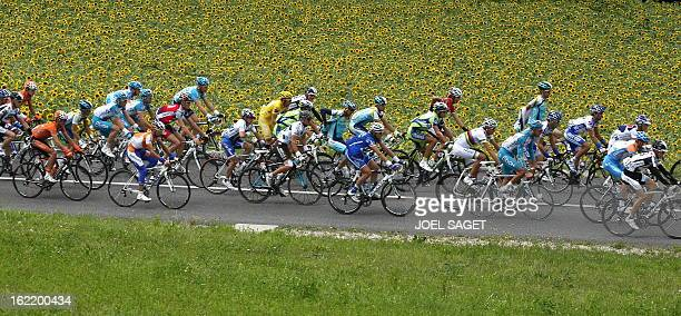 The pack rides past sunflowers on July 19 2009 in the 2075 km and fifteenth stage of the 2009 Tour de France cycling race run between Pontarlier and...