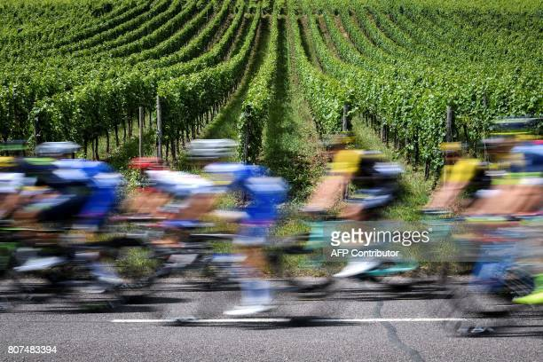 The pack rides past vineyards during the 2075 km fourth stage of the 104th edition of the Tour de France cycling race on July 4 2017 between...