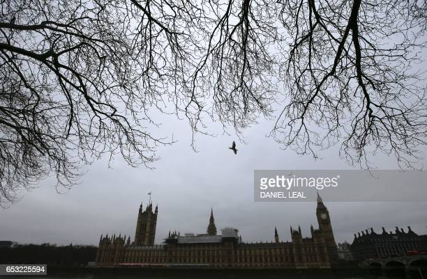 The Palace of Westminster comprising the House of Lords and the House of Commons is pictured from accross the River Thames in central London on March...