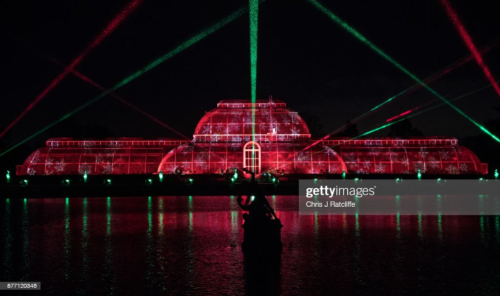 Kew Gardens Light Up For Christmas