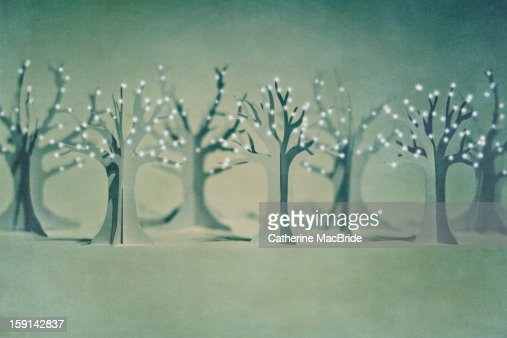 the paper forest... : Stock Photo