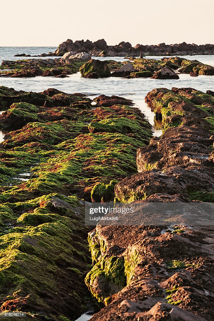 The passetto rocks at sunrise, Ancona, Italy : Stock Photo