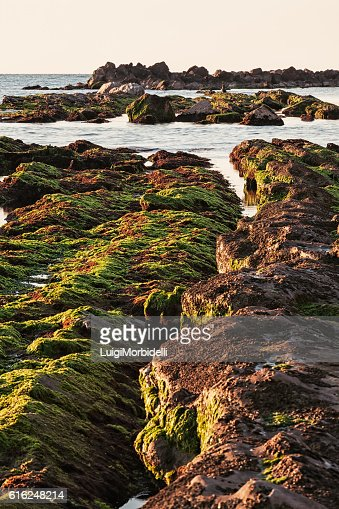 The passetto rocks at sunrise, Ancona, Italy : Foto de stock