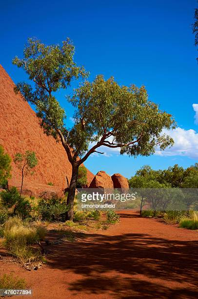 The Path Around Uluru