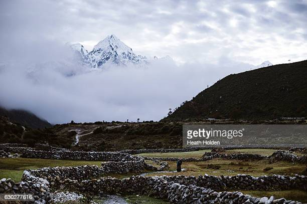 The peak of Thamserku towers in the distance as a resident works in the field on September 23 2016 in Thame NepalThame is off the main trekking route...