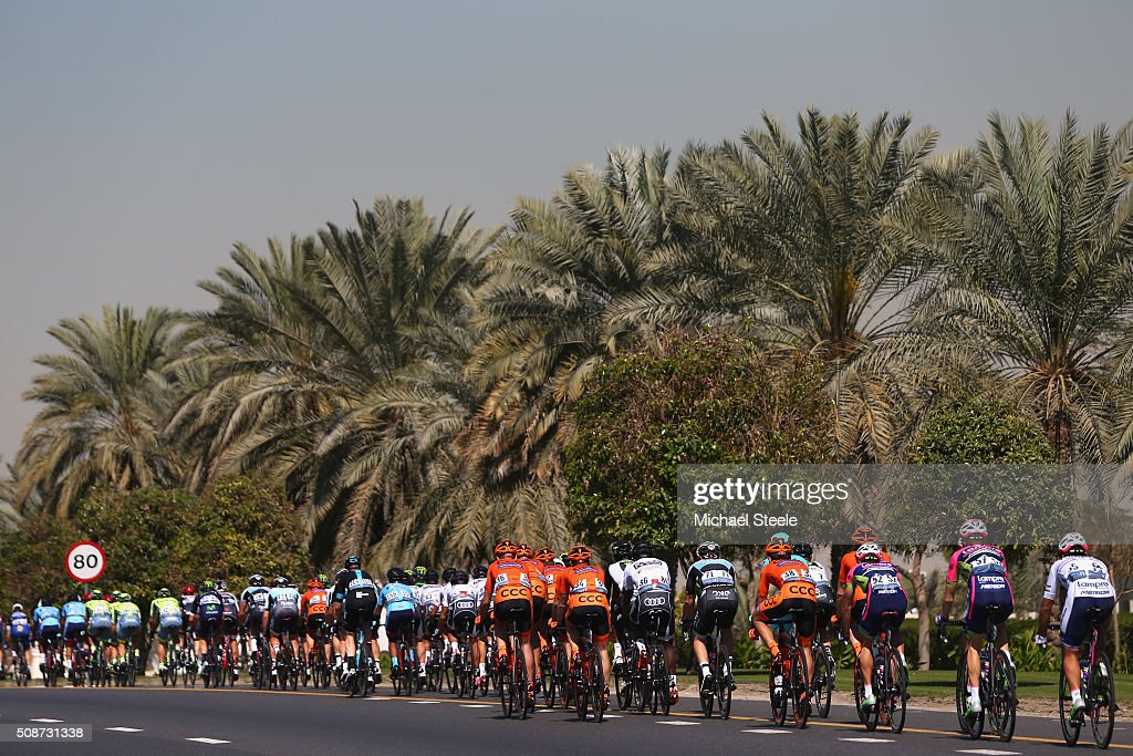 The peloton head down a palm tree lined avenue during the Business Bay Stage Four of the Tour of Dubai on February 6, 2016 in Dubai, United Arab Emirates.