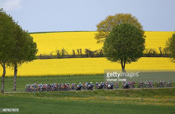 The peloton heads past rape fields during stage two of the Tour de Romandie from Sion to Montreux on May 1 2014 in Montreux Switzerland