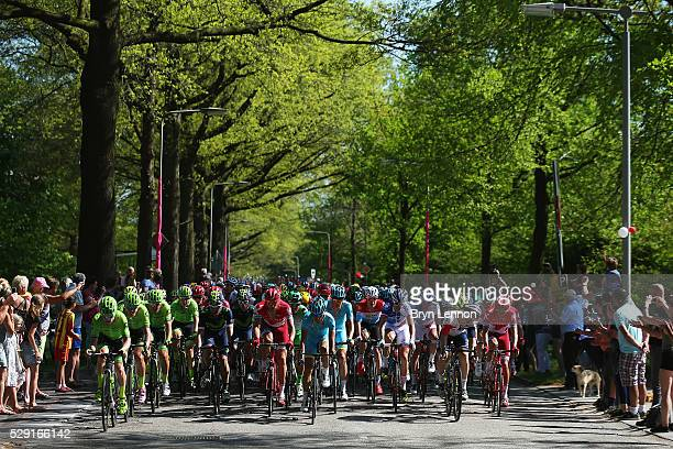 The peloton makes it's way through the Dutch countryside on stage three of the 2016 Giro d'Italia after a 190km stage from Nijmegen to Arnhem on May...