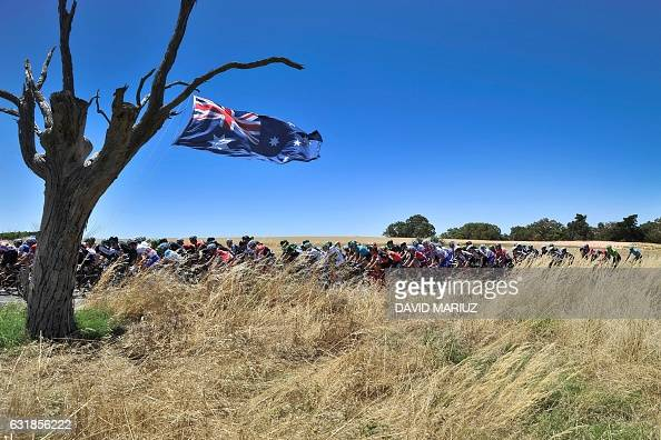 TOPSHOT The peloton moves past an Australian flag hung from a tree during the first stage of the Tour Down Under cycling race from Adelaide to...