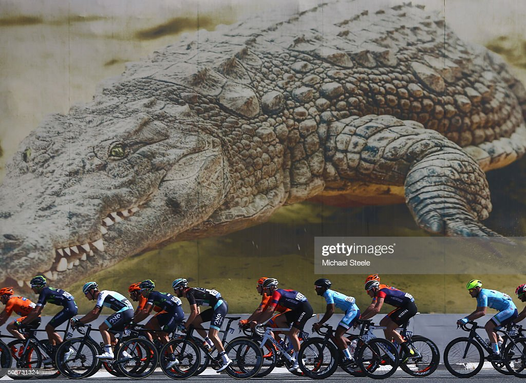 The peloton pass by the Dubai Crocodile Park during the Business Bay Stage Four of the Tour of Dubai on February 6, 2016 in Dubai, United Arab Emirates.