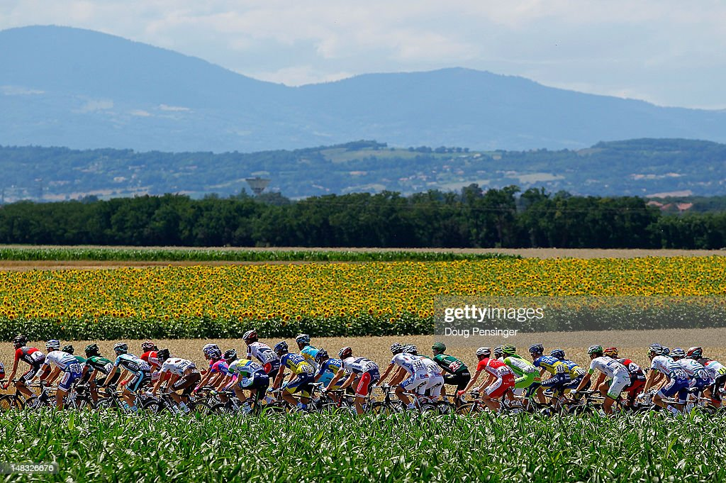 The peloton passes through agricultrual fields during stage twelve of the 2012 Tour de France from Saint-Jean de Maurienne to Annonay on July 13, 2012 in Anneyron, France.