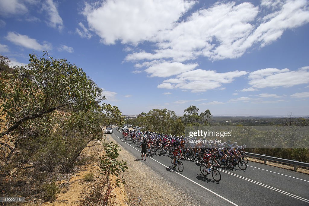 The peloton ride during the 126.5km stage 4 of the Tour Down Under in Adelaide on January 25, 2013. The six-stage Tour Down Under takes place from January 20 to 27. AFP PHOTO / Mark Gunter IMAGE