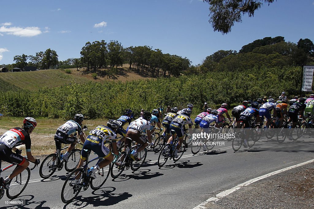The peloton ride during the 135km stage 1 of the Tour Down Under in Adelaide on January 22, 2013. The six-stage Tour Down Under takes place from January 20 to 27. AFP PHOTO / Mark Gunter USE